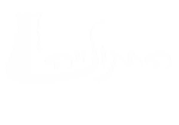 Hadera Cat Sanctuary